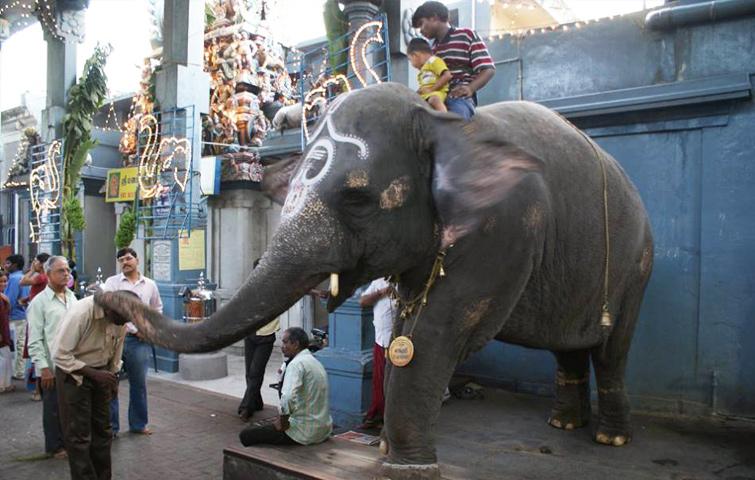 Manakula Vinayaka Temple, Pondicherry