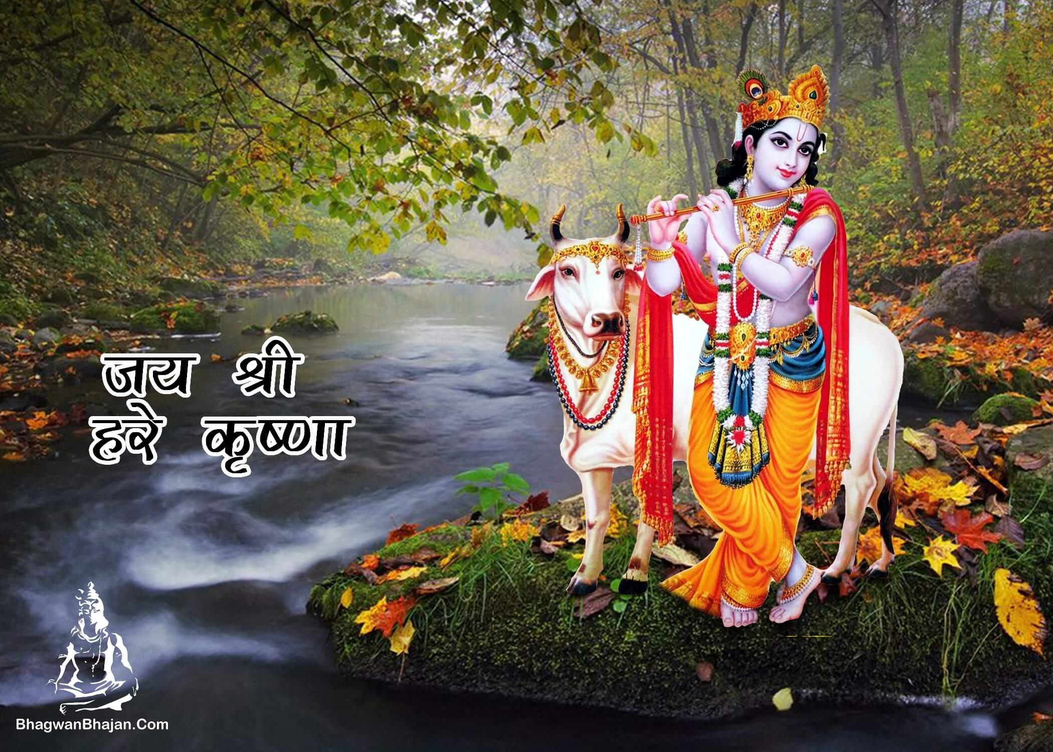 lord krishna jai shri krishna new wallpaper