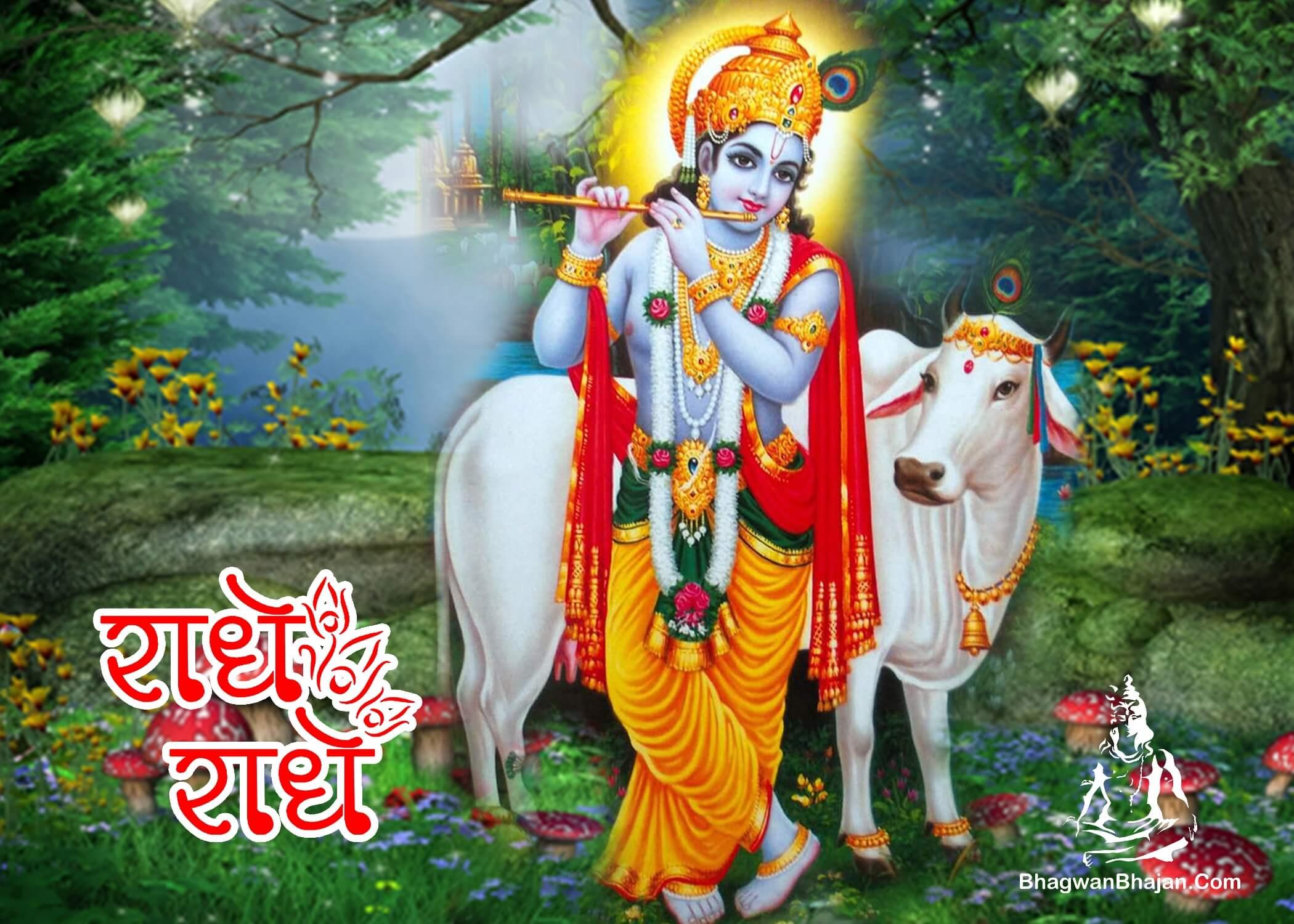 radhe krishna radhe radhe hd wallpaper