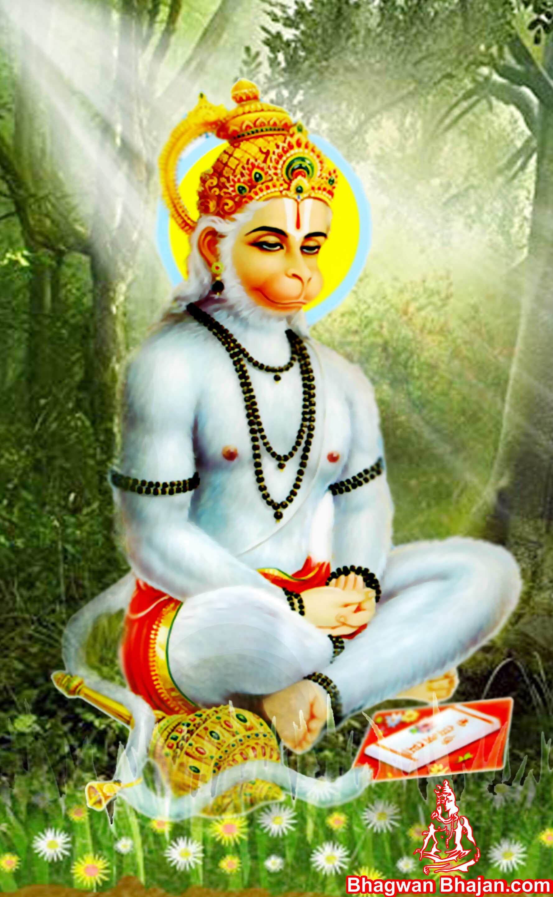 Bajrangi Hanuman Photos