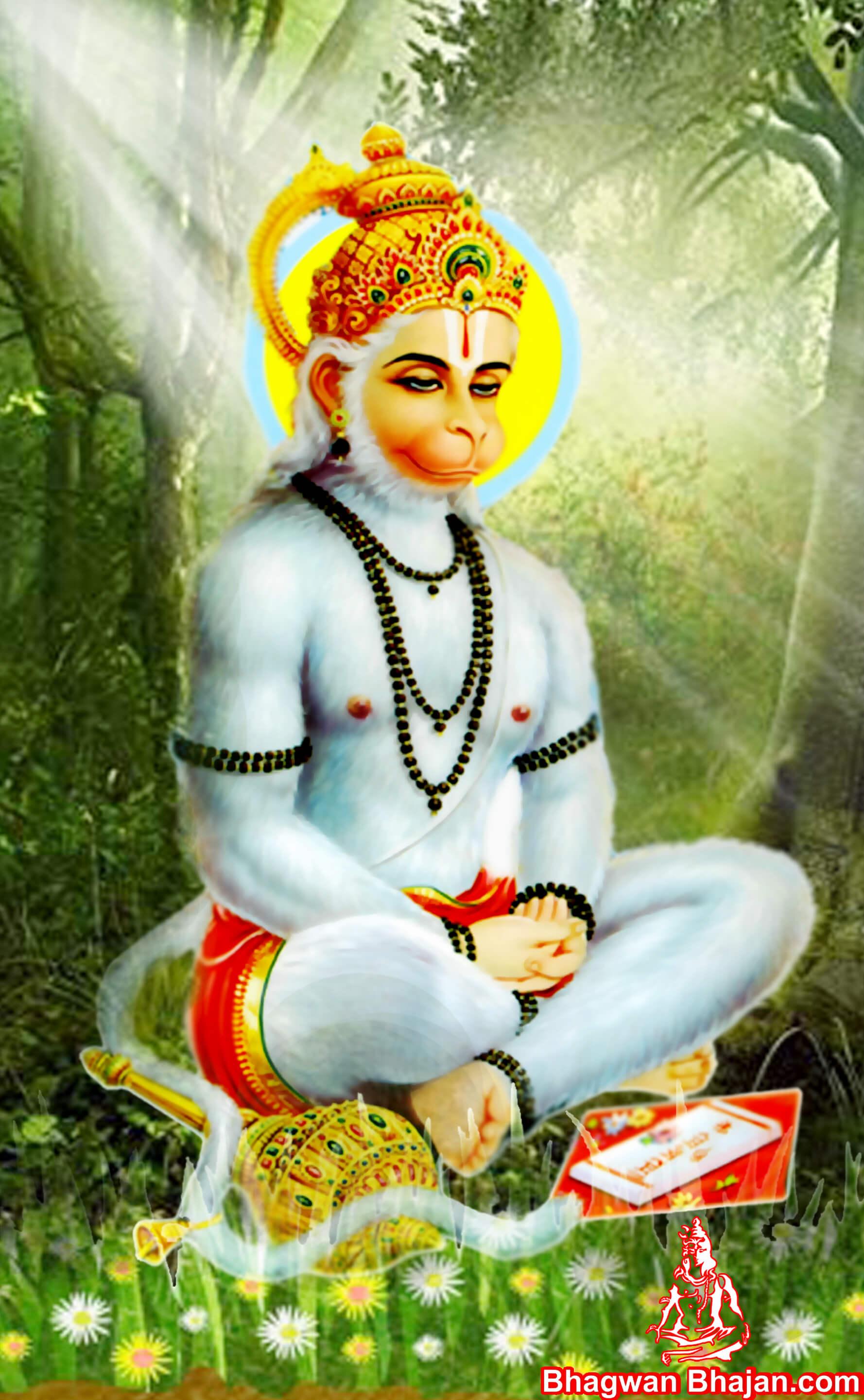 Bajrangi Hanuman Photos